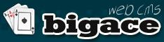 BIGACE Logo